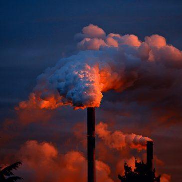XIV Gimnazjada  Ekologiczna